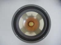 Infinity RS3A defekt / Bass Lautsprech..