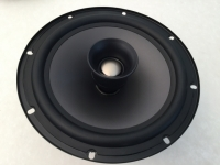 Bosch LC2‐PC30G6‐8 Woofer with Tweeter
